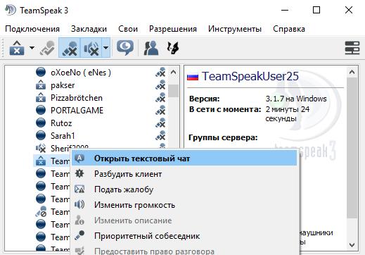 чат в TeamSpeak